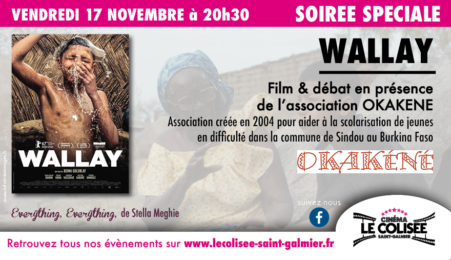 Photo du film Wallay